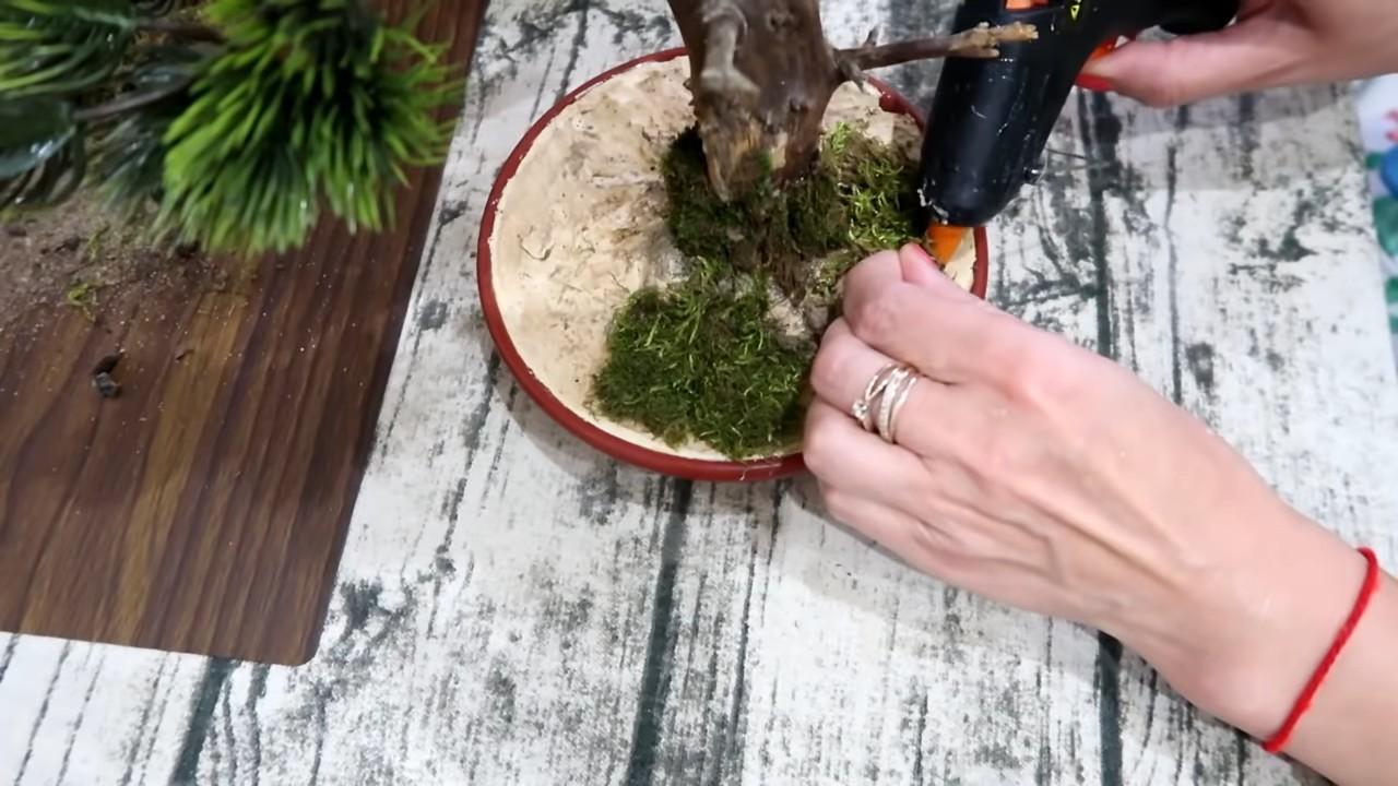 Мастер класс по созданию декоративного дерева из коряги