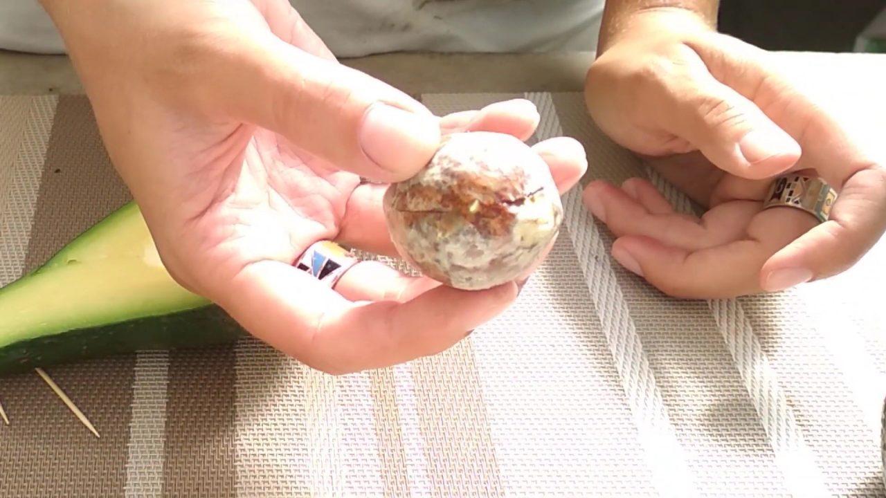 Выращиваем авокадо из косточки дома