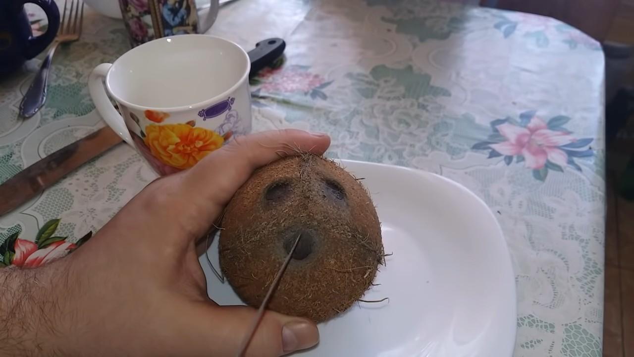 Как открыть кокос без молотка и мучений