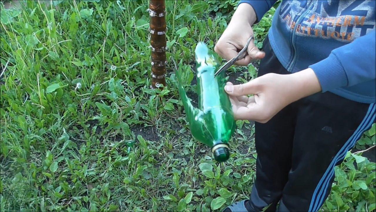 Собираем пальму из пластиковых бутылок: пошаговая инструкция