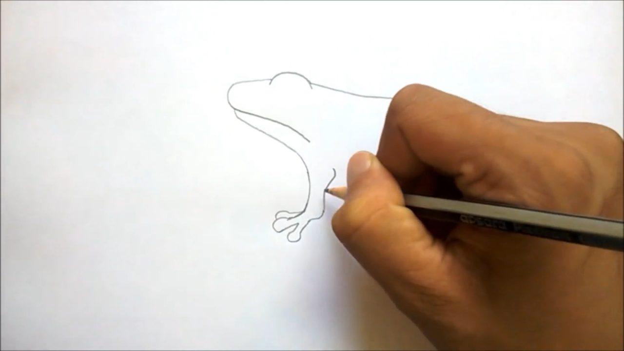 Как рисовать лягушку шаг за шагом