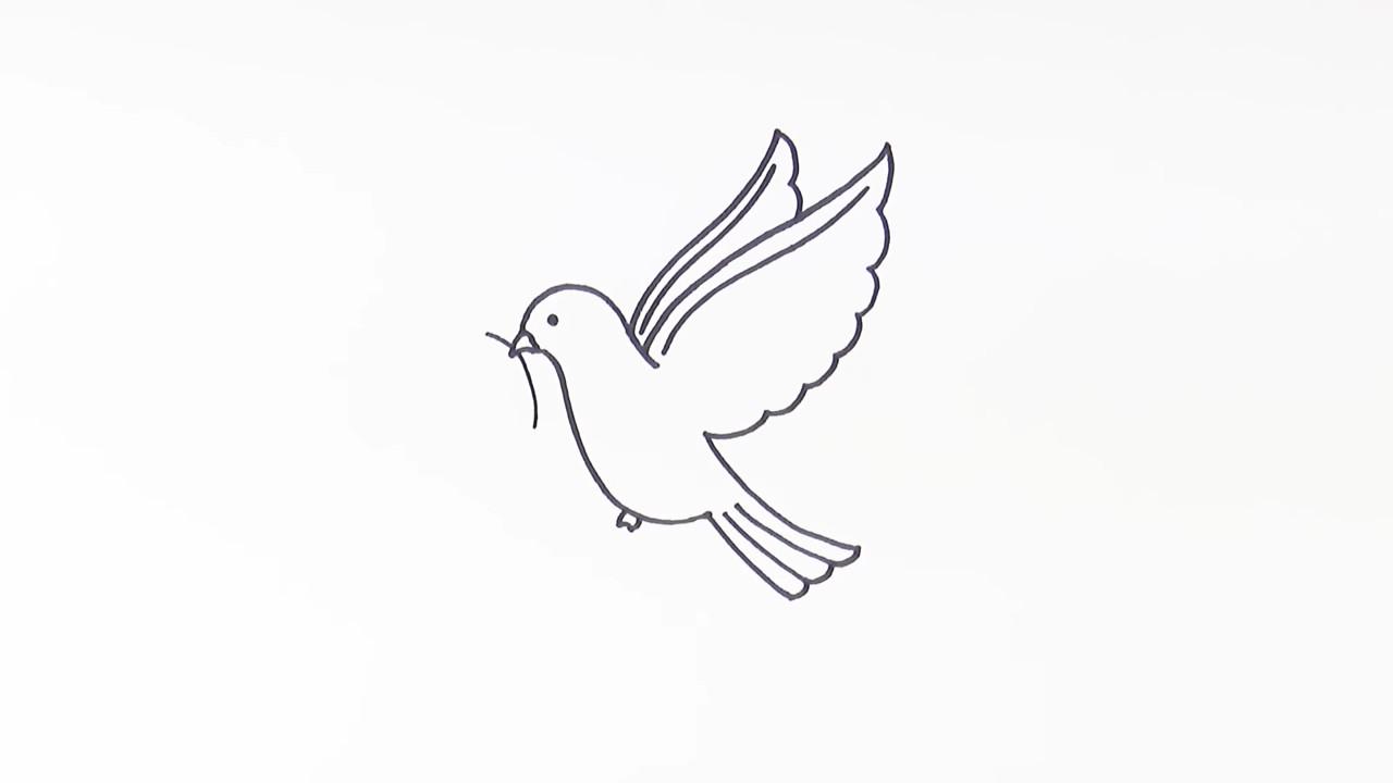 Как нарисовать голубя мира