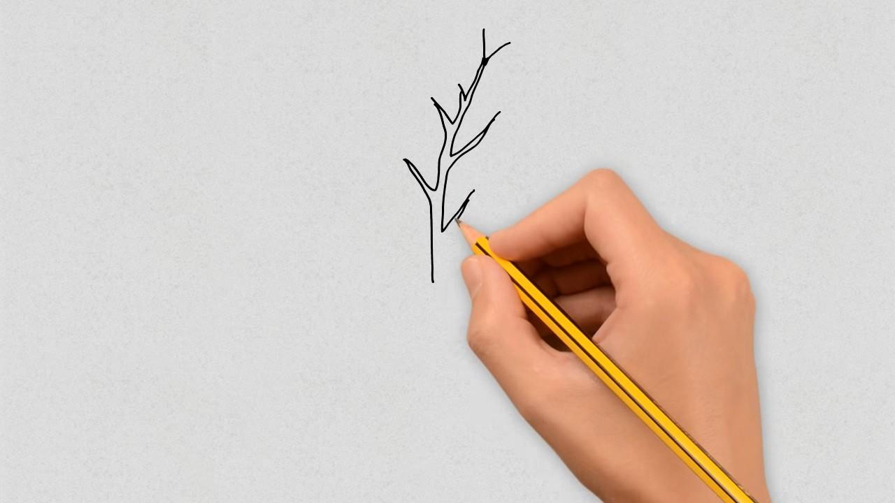 Как нарисовать березу: пошаговый урок для детей