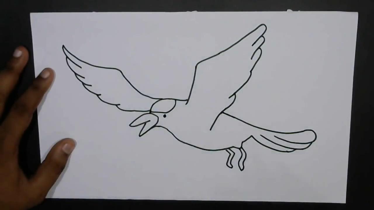 Как нарисовать птичку в полете поэтапно