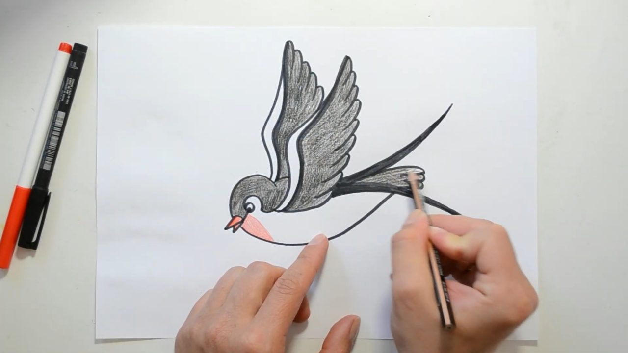 Рисуем ласточку с детьми по шагам