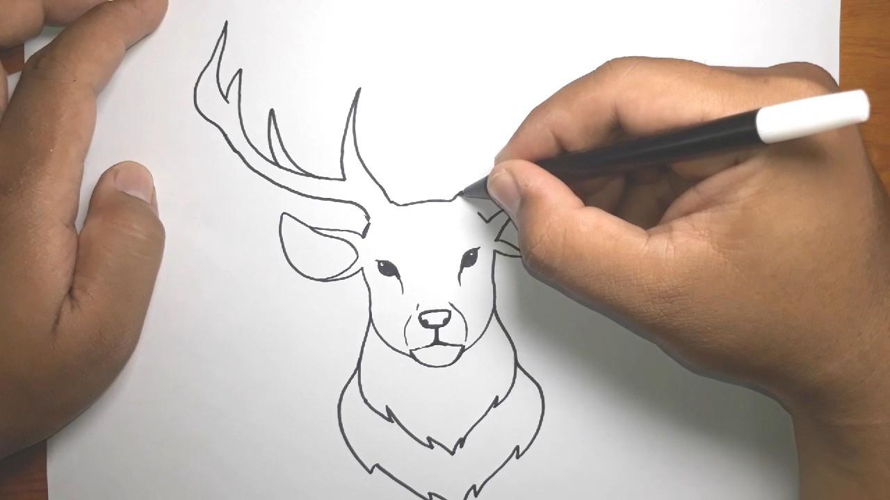 Как нарисовать оленя: поэтапный урок