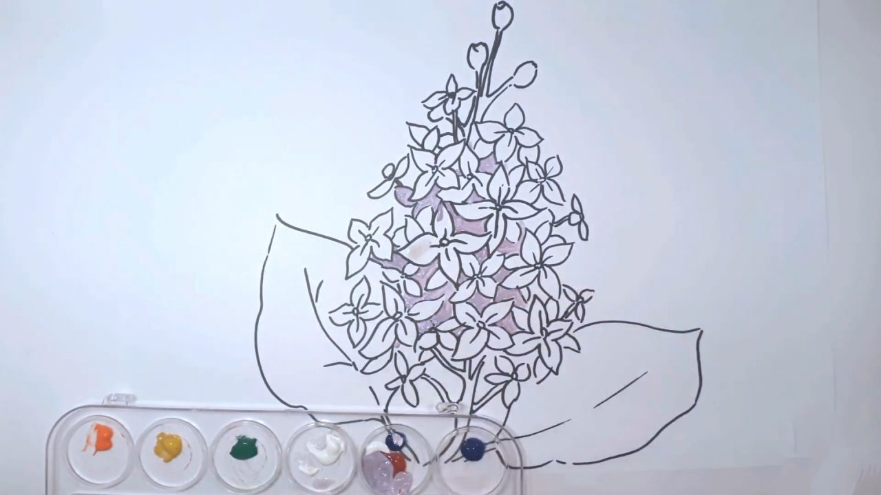 Как нарисовать сирень карандашом и гуашью: мастер класс для начинающих