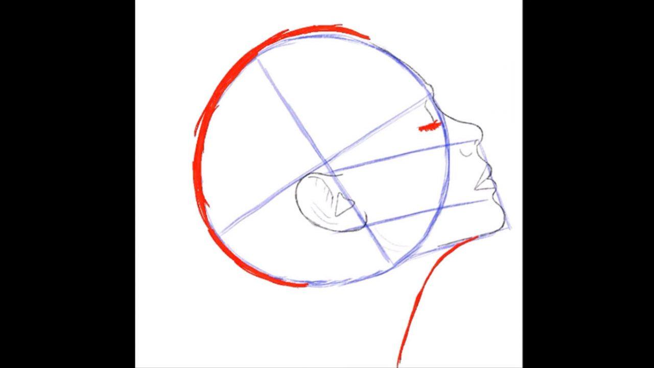 Как нарисовать голову девушки в профиль поэтапно