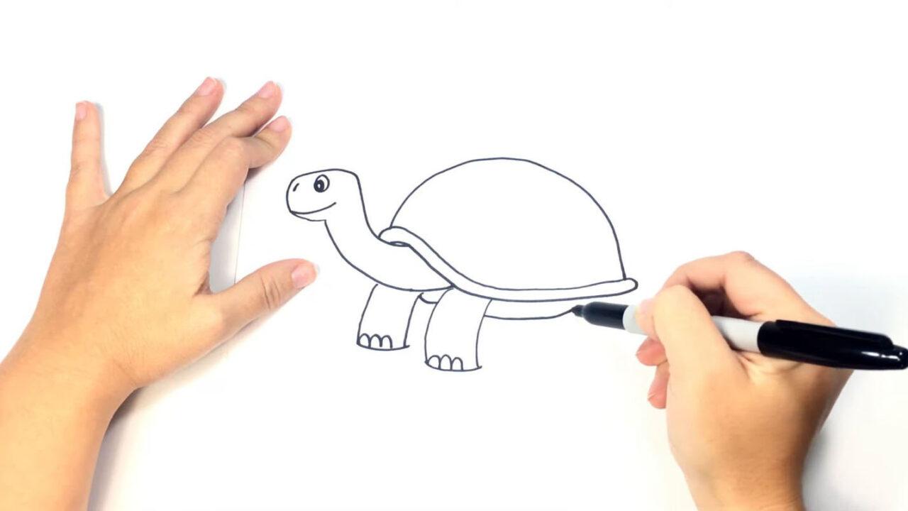 Как нарисовать черепаху карандашом или фломастером