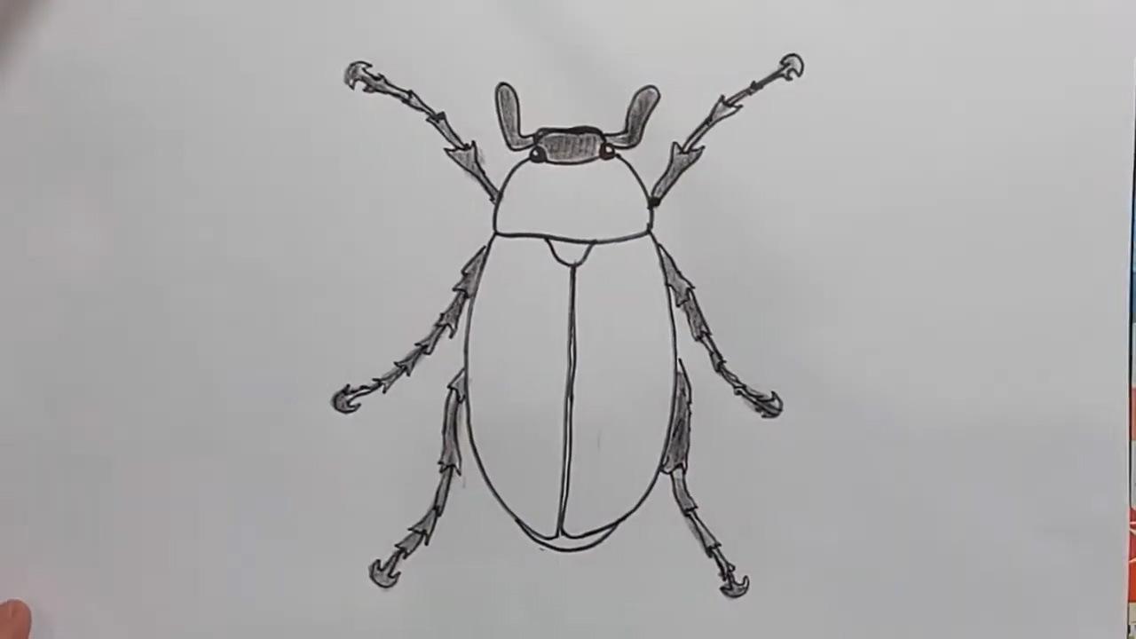 Как нарисовать майского жука