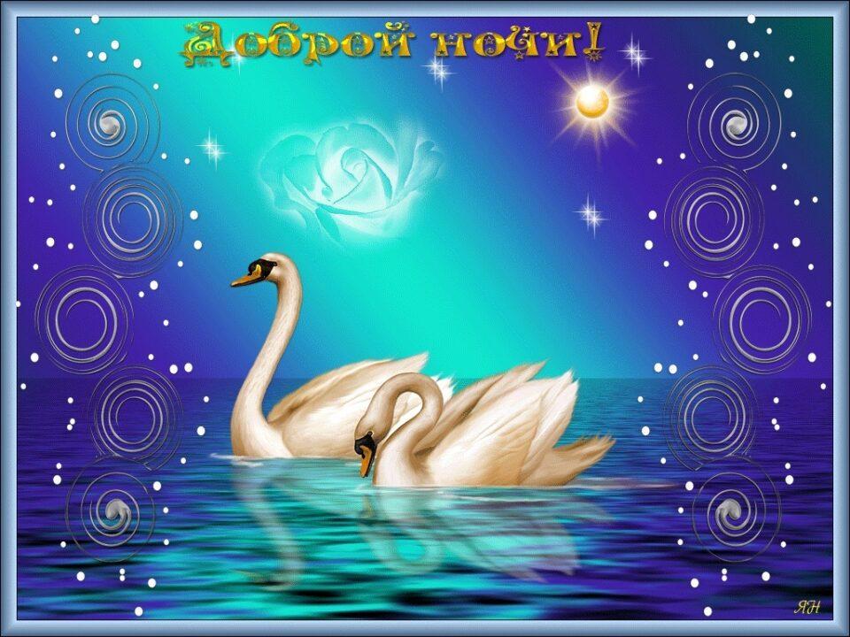 Спокойной ночи и сладких снов! 80 прикольных картинок-открыток