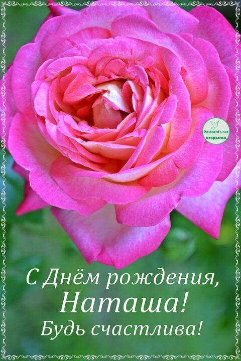 С днем рождения, Наташа! 82 прикольных поздравления в картинках