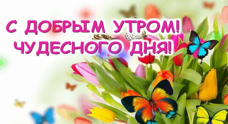 Хорошего дня и отличного настроения! 114 картинок-открыток с добрыми пожеланиями