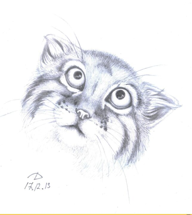 150 рисунков милых котов, кошек и котят нарисованных карандашом и не только