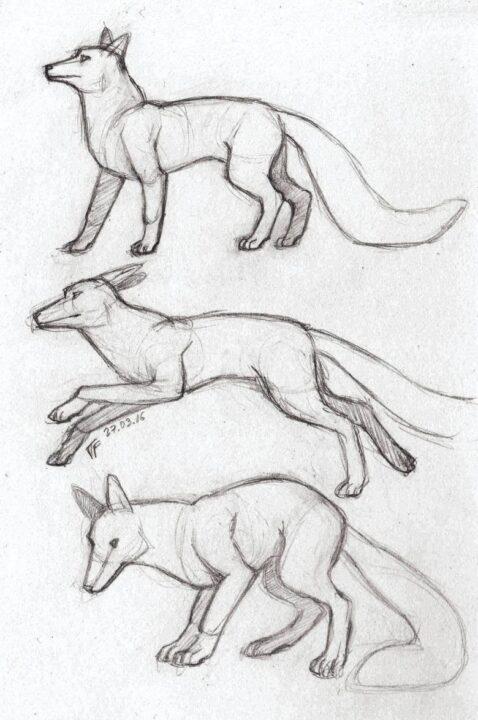 200 простых карандашных рисунков для срисовки на любую тему