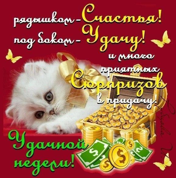 Хорошей рабочей недели! 113 открыток с пожеланиями удачной недели и хорошего настроения