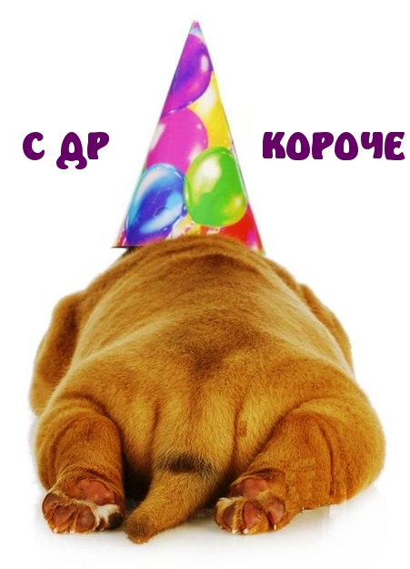 С днем рождения! 430 прикольных открыток со смешными поздравлениями