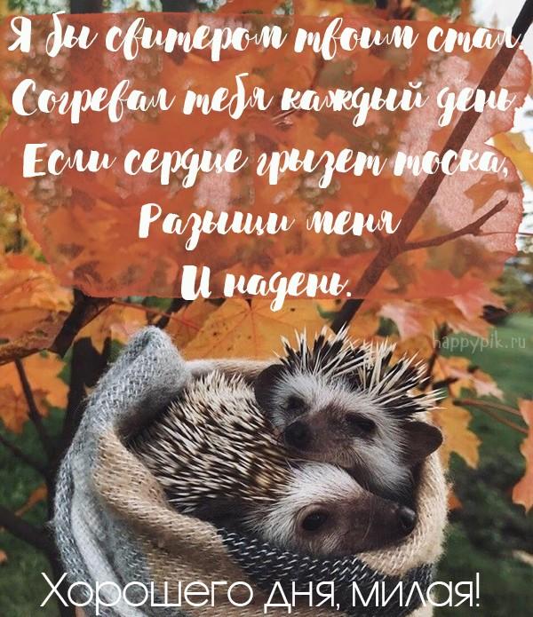 С добрым утром, любимая! 250 красивых картинок-открыток для девушки или женщины