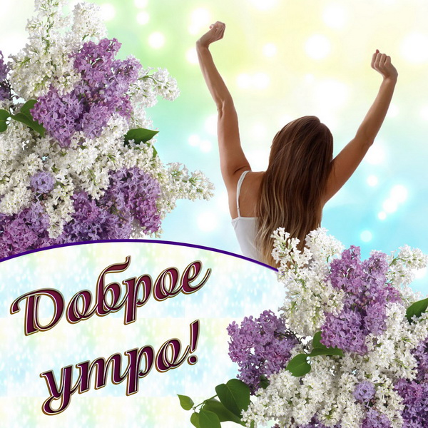 С добрым утром! 138 красивых открыток с цветами