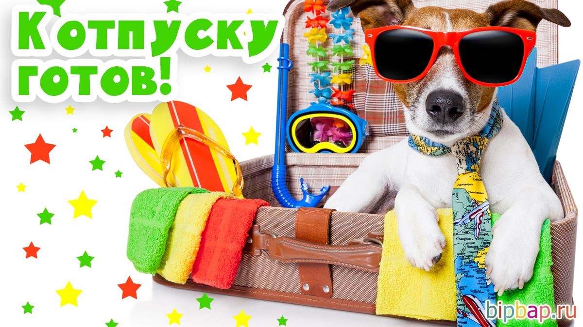 200 смешных картинок и открыток про отпуск