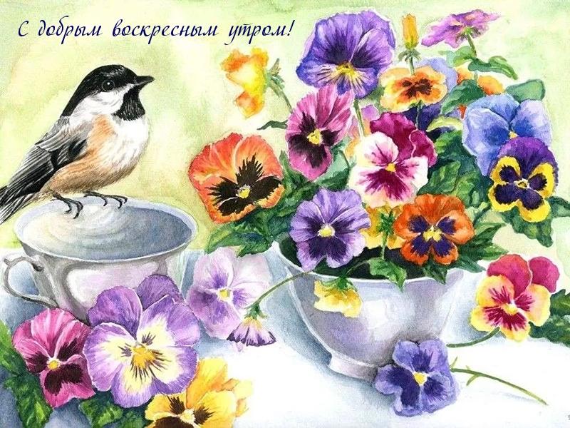 С добрым воскресным утром! 150 картинок-открыток