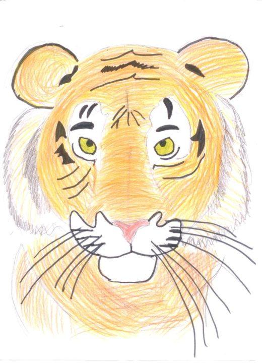 310 картинок животных для срисовки детьми и взрослыми