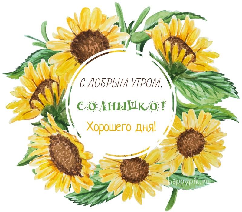 Доброе утро солнышко! 55 красивых открыток для любимых