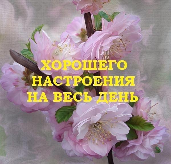 Доброе нежное утро! 138 романтических картинок с поцелуями и любовью