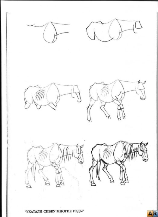 200 рисунков лошади карандашом и не только