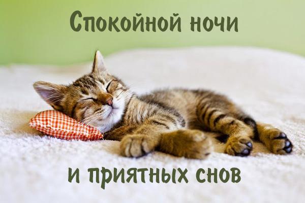 Спокойной ночи, любимая моя! 150 открыток для девушки