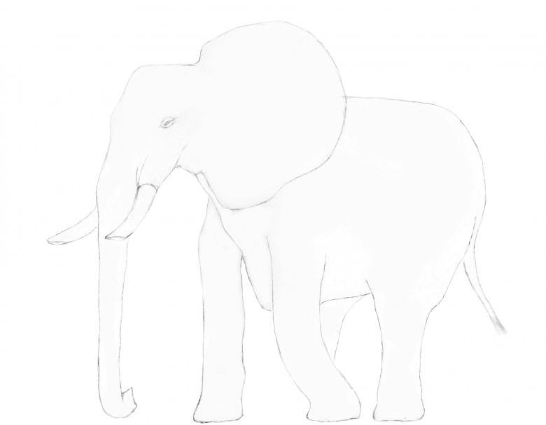 90 рисунков слона для детей и взрослых