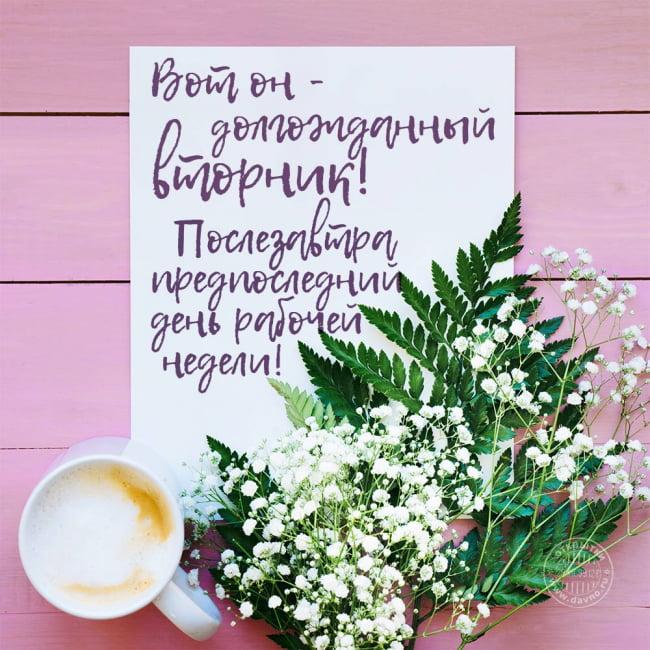 С добрым утром и хорошего вторника! 179 прикольных открыток