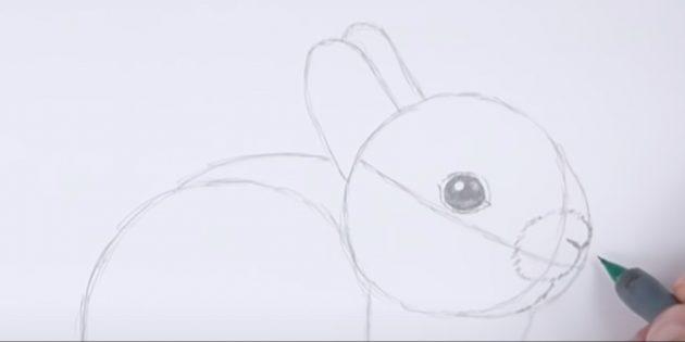 150 рисунков зайчиков для детей и начинающих взрослых