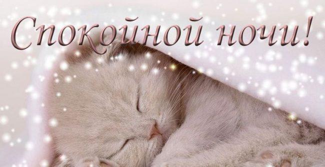 200 открыток с пожеланиями спокойной ночи для любимого мужчины