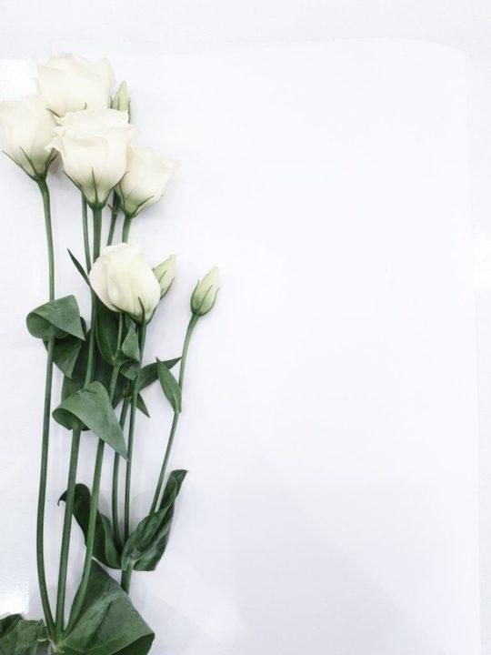 152 картинки на фон для сторис в Инстаграм