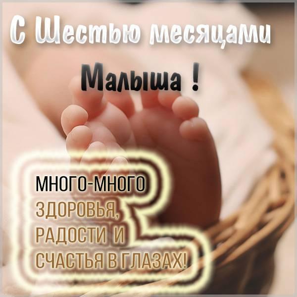 90 поздравлений с 6 месяцами в открытках