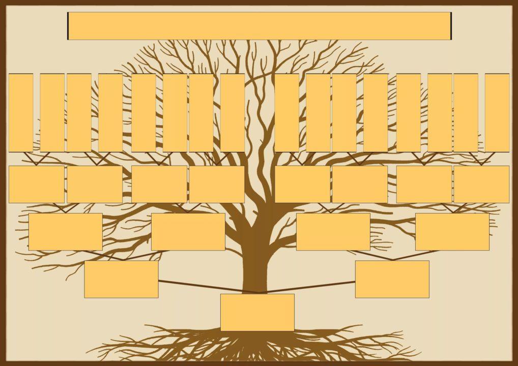 30 шаблонов генеалогического дерева для заполнения