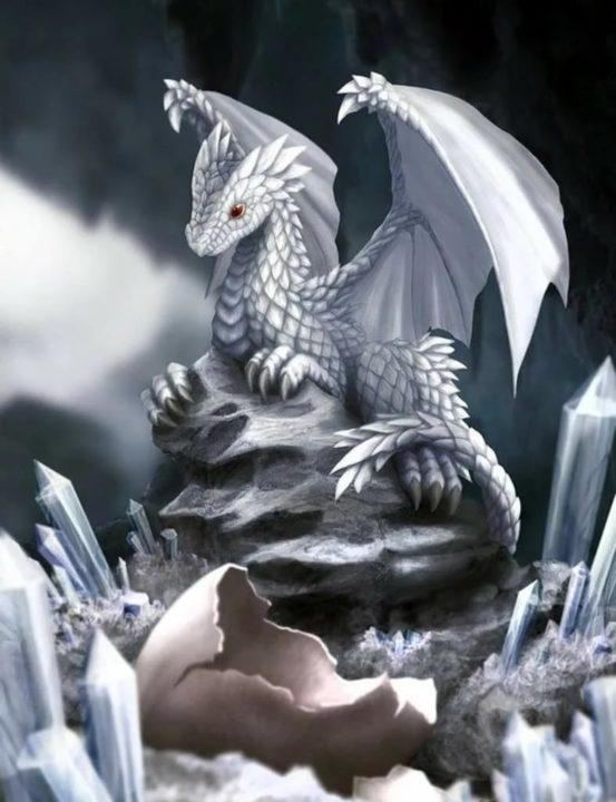 140 картинок с драконами