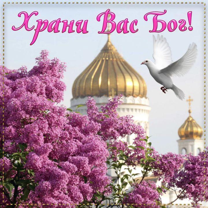 Доброго благословенного дня! 80 христианских картинок